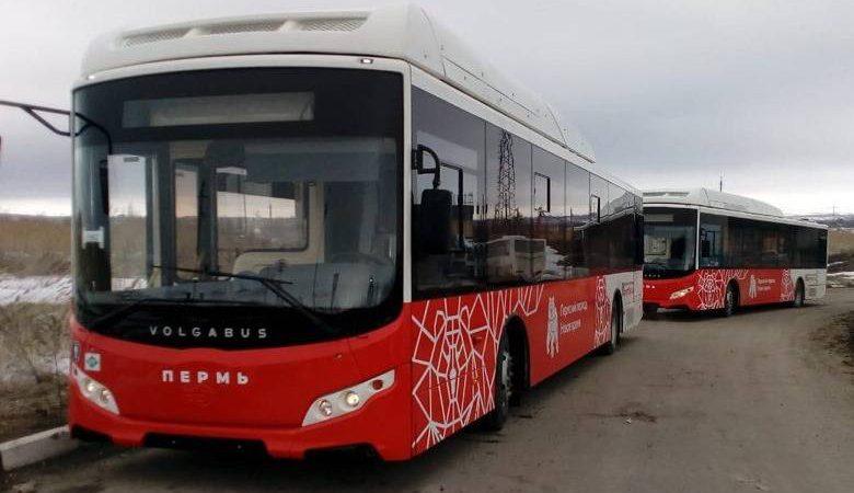 автобусы пермь 2